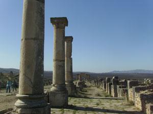 Las columnas se imponen en la Decumanus Maximus