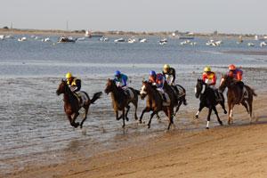 Unos caballos pugnan por la victoria en la playa sanluqueña