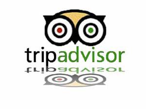 El logotipo del búho de la firma Tripadvisor