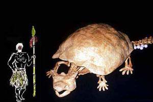 Un esqueleto de Meiolania comparado con un cazador lapita