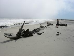 Una sugerente imagen de la Skeleton Coast